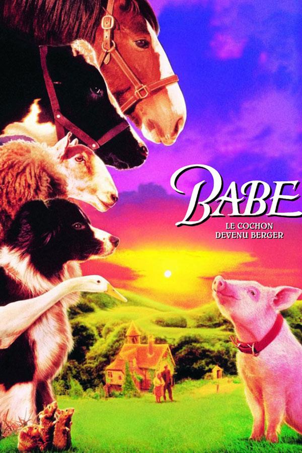 Babe le cochon devenu berger