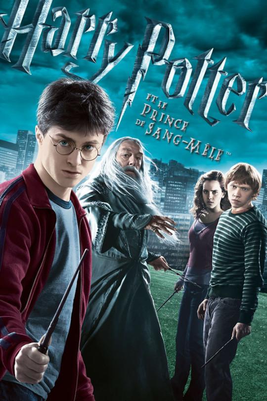 Harry Potter et le prince de sang-mêlé (6)